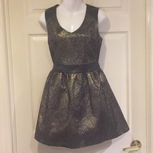 NWOT Bronze and black dress